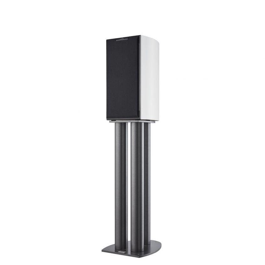 Audiovector R1 Signiature